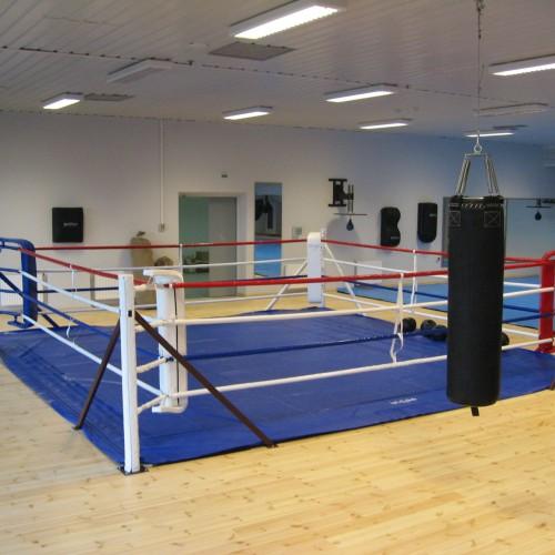 Как выбрать боксерский ринг